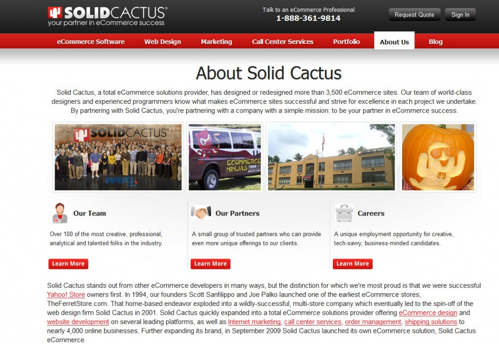 screen shot of solid cactus homepage